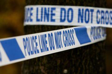 Police crime generic