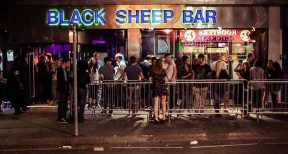 Bar Black Sheep