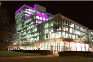 No problems with the lights at Croydon Council's £140m HQ