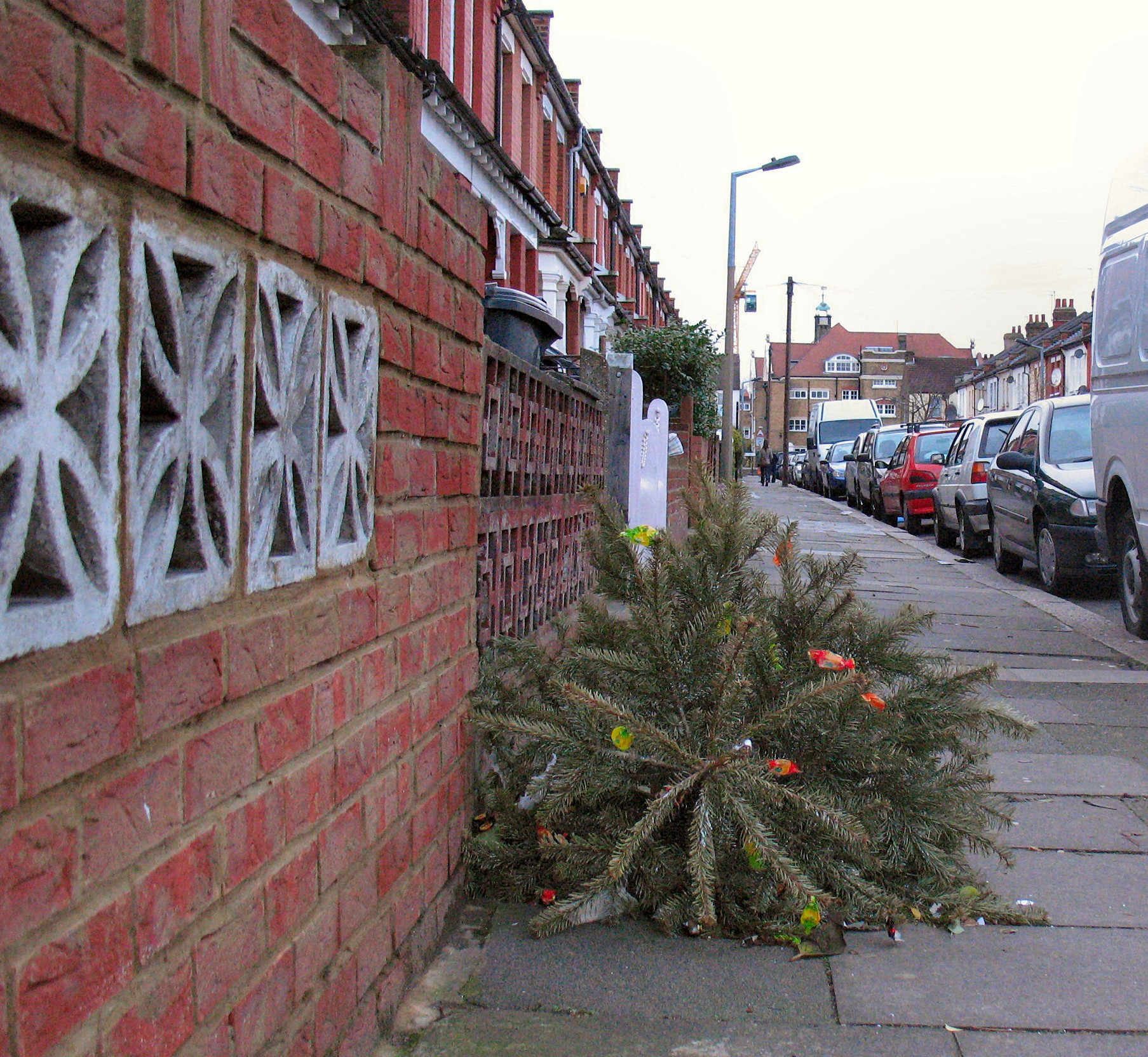 "Westfield Christmas Tree Farm: Croydon Council's ""non-drop"" Trees That Cost Us All Extra"