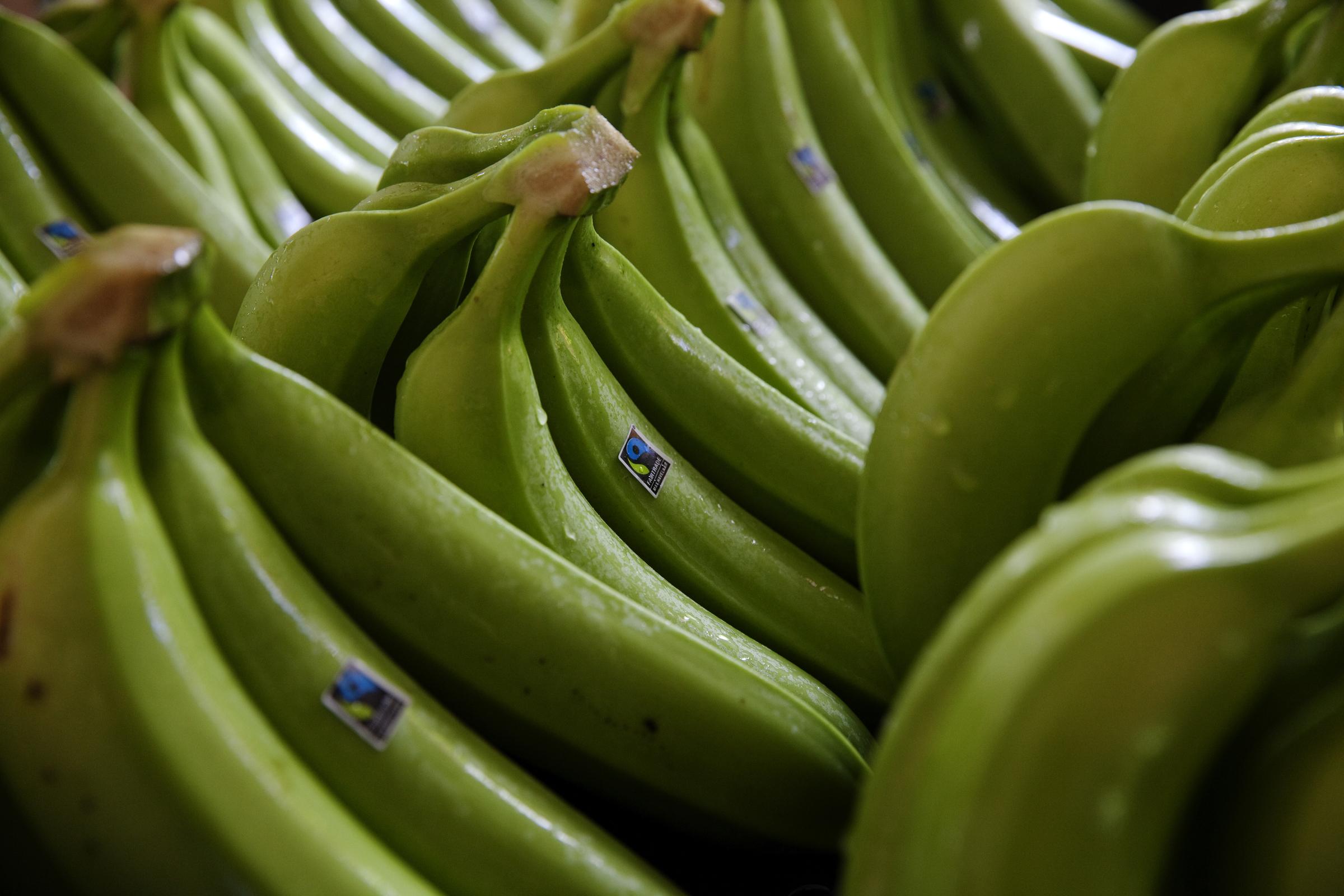 Dozens Of Boys Go Bananas For Bananas