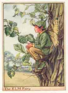 The Elm Fairy, one of Cicely Mary Barker's creations