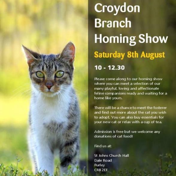 Croydon cats
