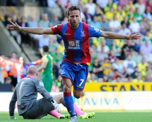 Soaring Eagle: Yohan Cabaye takes off after scoring his penalty against WBA yesterday