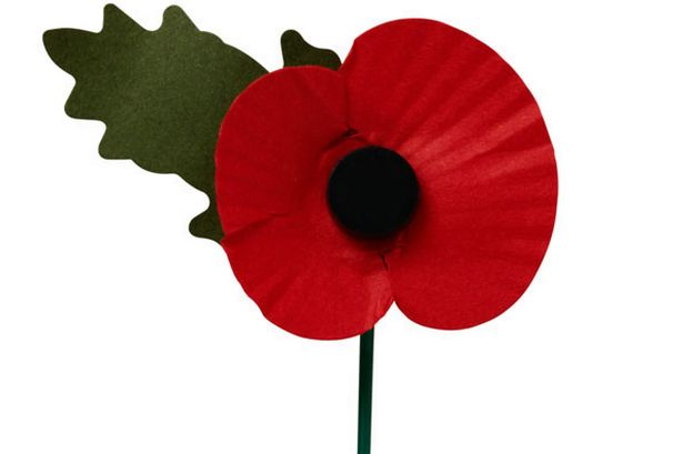 Why The Poppy Is A Symbol That Should Unite Not Divide Us Inside