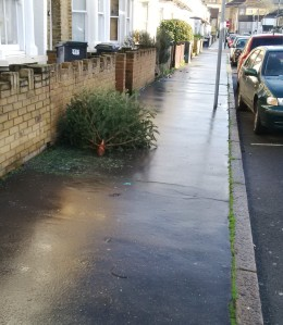 Howley Road. A long way from the council dump. Which stopped taking Christmas trees on Saturday