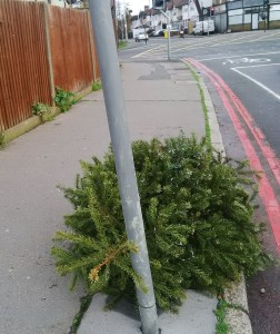 On Mill Lane, the double red lines didn't deter whoever dumped their Christmas tree close to this busy junction