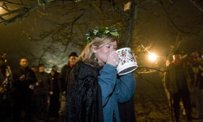 One aspect of wassailing which has proved very attractive