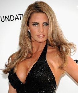 Fairfield Halls' last hope? Katie Price