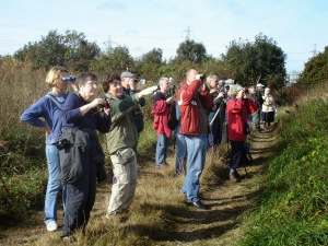 Sunday's wildlife walk is a public event at Beddington Farmlands