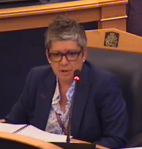 Council CEO Jo Negrini: house building is easy, apparently