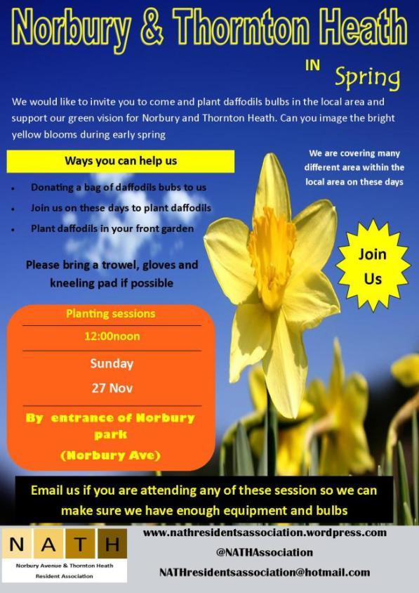 norbury-daffodil-planting