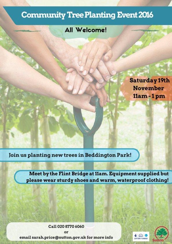 beddington-park-trees